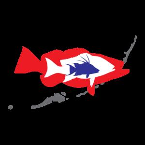 Key west shrimp company freshest seafood around for Red fish blue fish key west